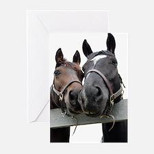 Kissing Horses Greeting Cards (Pk of 10)