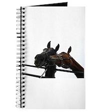 Kissing Horses Journal