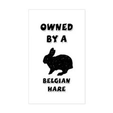 Belgian Hare Rectangle Decal