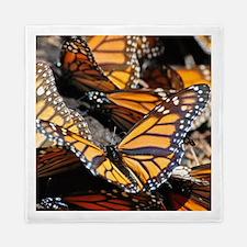 Butterfly 1 Square Queen Duvet