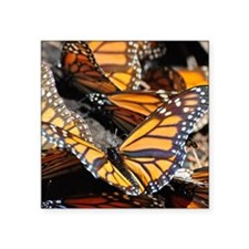 Butterfly 1 Square Sticker