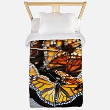 Monarch Butterfly 2 Square Twin Duvet