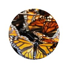 """Monarch Butterfly 2 Square 3.5"""" Button"""