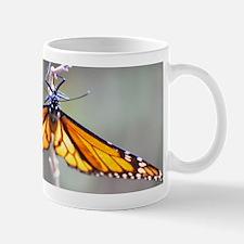 Monarch Butterfly 5 Mugs