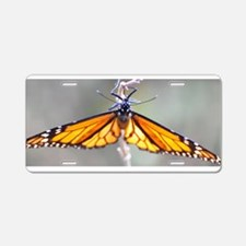Monarch Butterfly 5 Aluminum License Plate