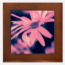 Dreamy daisy  Framed Tile