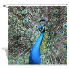 Majestic Peacock Shower Curtain