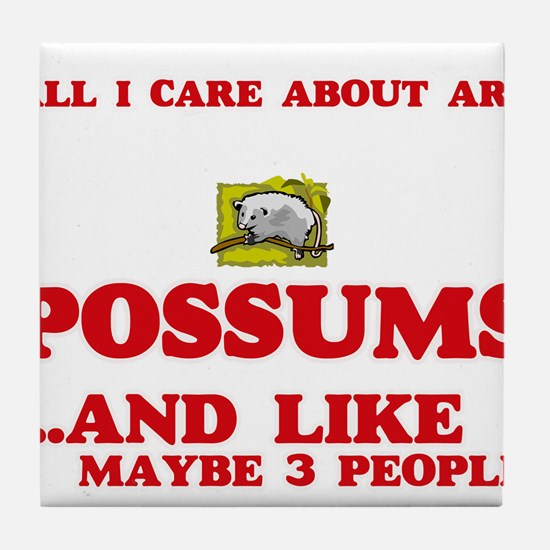 All I care about are Possums Tile Coaster