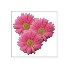 "Pink Gerber Daisy Square Sticker 3"" x 3"""