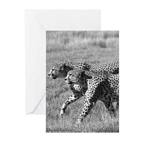 Cheetah Brothers Greeting Cards (Pk of 10)