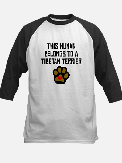 This Human Belongs To A Tibetan Terrier Baseball J