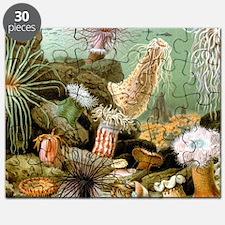 Vintage Sea Anemones Puzzle