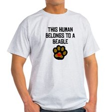 This Human Belongs To A Beagle T-Shirt