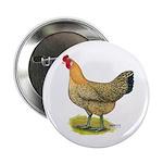 Buttercup Hen Button