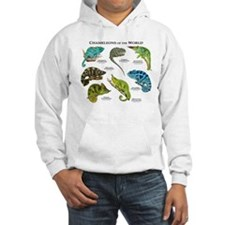 Chameleons of the World Hoodie