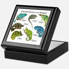 Chameleons of the World Keepsake Box