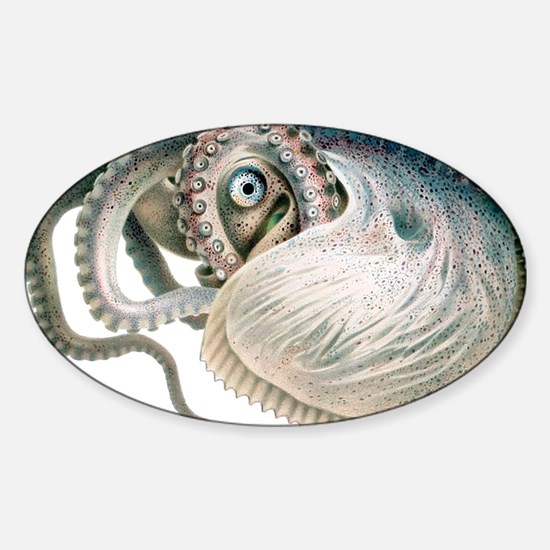 Vintage Octopus Sticker (Oval)