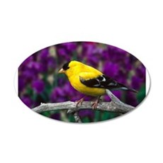 American Goldfinch Bird Black and Yellow Wall Deca