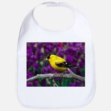 American Goldfinch Bird Black and Yellow Bib