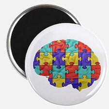 Autistic Brain Magnets