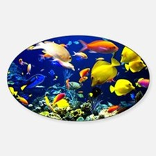 Tropical Fish Sticker (Oval)