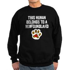 This Human Belongs To A Newfoundland Sweatshirt
