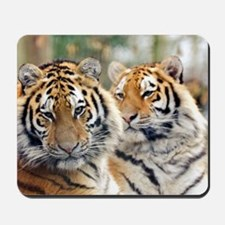 Tigers Mousepad