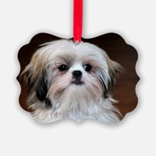 Precious Little Shih Tzu Ornament