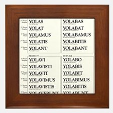 YOLO Conjugated in Latin Framed Tile
