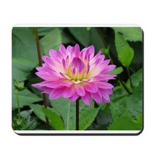 Purple Yellow Dahlia Mousepad