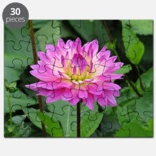 Purple Yellow Dahlia Puzzle