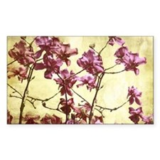 Beautiful magnolia art Decal