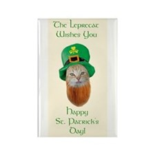 Cute St patricks day Rectangle Magnet