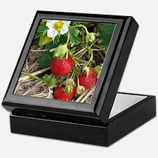 Strawberries in Summer Keepsake Box