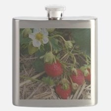 Strawberries in Summer Flask