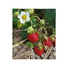 Strawberries in Summer Throw Blanket