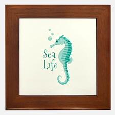 Sea Life Framed Tile