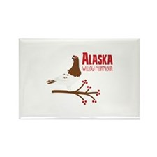 Alaska Willow Magnets