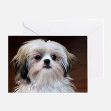 Precious Little Shih Tzu Greeting Cards