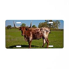 Texas Longhorn Aluminum License Plate
