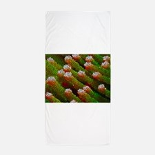 Stained Glass Coral Reef Beach Towel