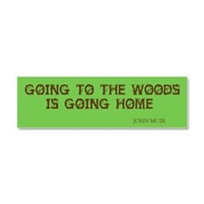 Cool Nature Car Magnet 10 x 3