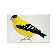 American Goldfinch Magnets