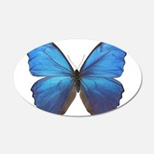 MORPHO DIDIUS D Wall Decal