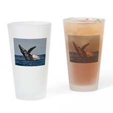 Humpback Whale 2 Drinking Glass