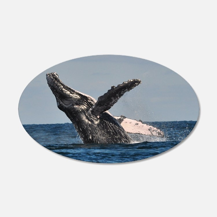 Humpback Whale Wall Art Humpback Whale Wall Decor