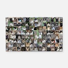 Cat Shelter Jessica's Cats Rectangle Car Magnet