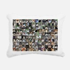 Cat Shelter Jessica's Ca Rectangular Canvas Pillow