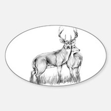 Buck/Doe Oval Decal