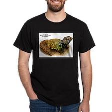 Bent's Spiny-Tailed Lizard T-Shirt